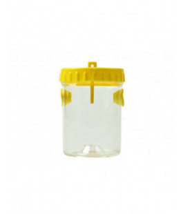 yellow-clear-plastic-wasp-trap